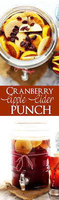 best 25 fall punch recipes ideas on thanksgiving