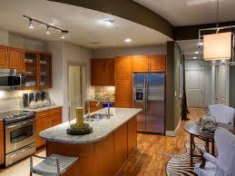 interior apartments stunning design basement apartment home