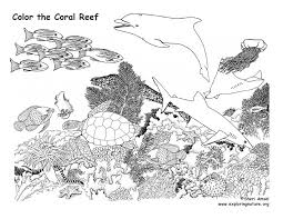 coloring pages of animals in their habitats habitats biomes u2013 coloring nature