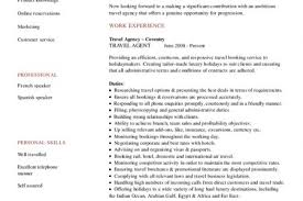 booking agent resume professional airline reservation agent
