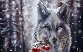 imagenes de fondo de pantalla lobos 699 lobo fondos de pantalla hd fondos de escritorio wallpaper