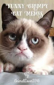 Funny Grumpy Cat Meme - funny grumpy cat memes everythingisgrxxn wattpad