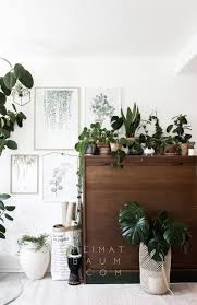 Urban Jungle Living And Styling by 1 Pflanze 3 Styles Urban Jungle Bloggers Heimatbaum Scethno