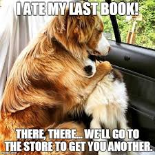 Meme Books - image tagged in dogs comfort books imgflip