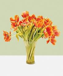 A Flower Vase How To Keep Cut Flowers Fresh Real Simple