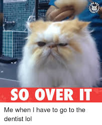 Over It Meme - 25 best memes about so over it so over it memes