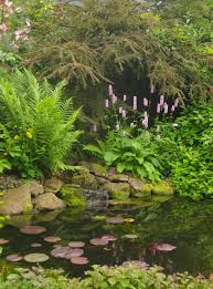 planting around a pond pond and planting design by goose green