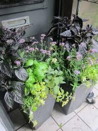 Urban Garden Supply - urban garden blog containers that inspire pinterest gardens