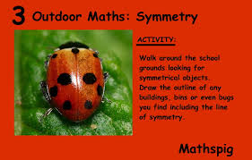 10 outdoor maths adventures grade 3 5 mathspig blog