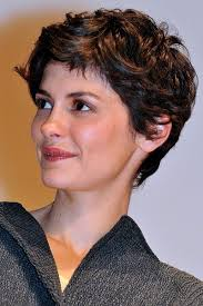 best highlights for pixie dark brown hair 1961 best a u d r e y images on pinterest audrey tautou french