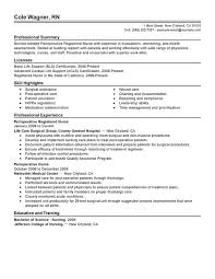 Professional Summary On Resume Examples by Unforgettable Perioperative Nurse Resume Examples To Stand Out