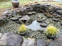 Is A Backyard Pond An Ecosystem Wildlife Premier Ponds