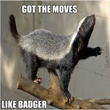 Honey Badger Meme Generator - badger meme 28 images honey badger meme generator 28 images