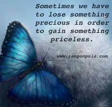 butterflies quote quote via iampoopsie com butterfly quotes