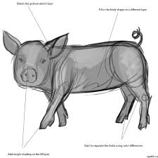 how to draw a pig an easy to follow guide for making a simple pig