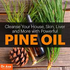 scented indoor l oil powerful pine oil cleanse house skin liver dr axe