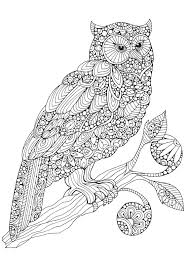 why adults are turning to colouring in books to relax sunday post
