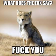 What Did The Fox Say Meme - what does the fox say fuck you disappointed tibetan fox meme
