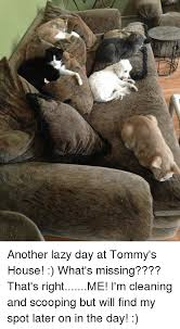 Lazy Day Meme - another lazy day at tommy s house what s missing that s rightme