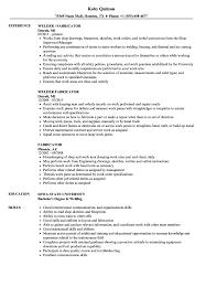 resume sles for teachers aides pendant fabricator resume sles velvet jobs