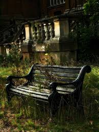 Old Park Benches 89 Best Tree Benches Images On Pinterest Tree Bench Outdoor