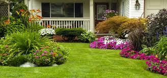 landscape design pressure washing u0026 lawn service orlando fl