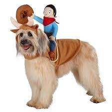 Dog Halloween Costumes Girls 85 Pet Costumes Patterns Ideas Images Pet