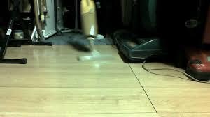 Vacuum For Laminate Wood Floors Vacuum Request Hoover Handi Vac Youtube