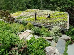 Hillside Cabin Plans Yoga Inhabitat Green Design Innovation Architecture Green