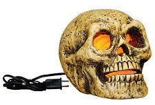 Halloween Skull Decorations Halloween Ghost Decorations 1991 Now Ebay