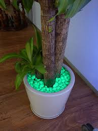 glow stones eco friendly pebble lighting requires no electricity glow