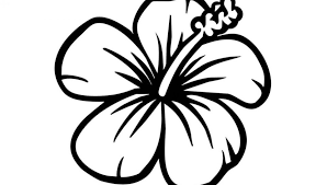 coloring pictures of hibiscus flowers clip art of coloring page hibiscus flower bouquet for kids flowers
