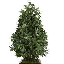 Laurel Topiary - large topiary wayfair ca