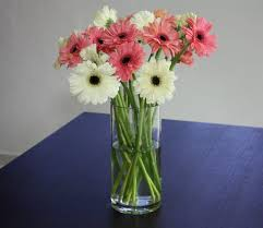 Wholesale Fresh Flowers Fresh Cut Flowers Wholesale Far East Flora Thomson Road