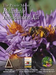 plants for native bees pollinator introduction kit prairie moon nursery