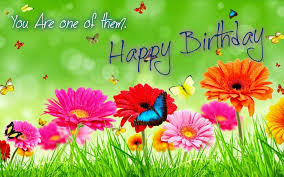 flower birthday happy birthday flowers wishes quotes and hd wallpapers