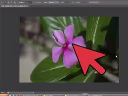 convertir varias imagenes nef a jpg cómo abrir archivos nef en photoshop 14 pasos