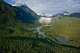 Alaska forest images Transition for tongass american forests jpg