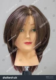 head training hairdresser stock photo 544990597 shutterstock
