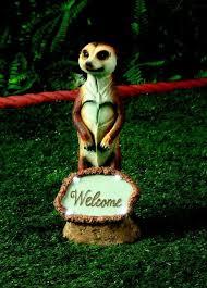 7 best meerkat 3 images on animals adorable