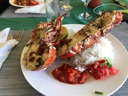 cuisiner homard surgelé homard surgelé photo de le tropical bel ombre tripadvisor