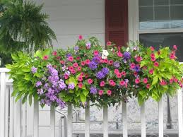planters glamorous flower boxes for railings deck planters