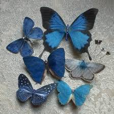 butterfly for hair 18 best butterfly hair accessories images on butterfly