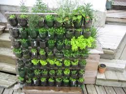 how to grow a vegetable garden in an apartment home outdoor