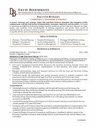 Sample Resume For Ceo by Bank Ceo Resume