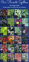 Cheap Flower Seeds - garden for less 18 insanely cheap flower seeds that get rave