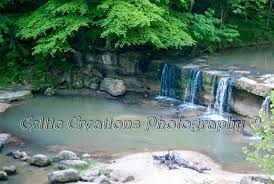 Mississippi wild swimming images The 10 best swimming holes in mississippi jpg