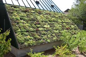 Louisville Botanical Gardens by Green Roof And Wall Symposium In Louisville Rpm Midwest
