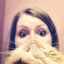 Cat Beard Meme - cat beards a photo meme where people place a cat in front of their