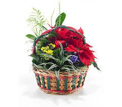 georgetown flowers christmas flowers delivery georgetown on vanderburgh flowers ltd